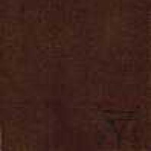 album Quadro silente - Quadro Silente