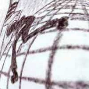 album oversuono - the electric ants