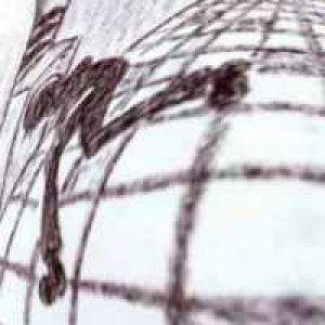 album alba elettrica - the electric ants