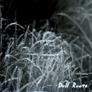 album Dull Roots - Big Trivella