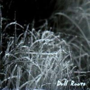 album Dull Roots - Big Trivella