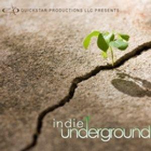 album Indie underground vol.8 - Dirtyfake