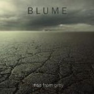 album Rise From Grey - Blume