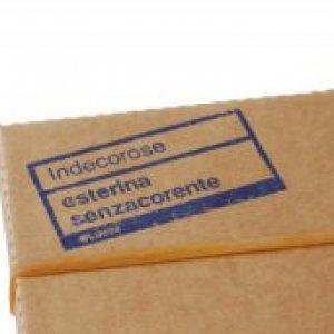 album Indecorose - Esterina
