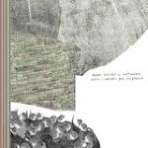 album Tutti I Colori Del Silenzio - Damo Suzuki's Network
