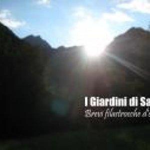 album Brevi filastrocche d'estate EP - I Giardini di Saba