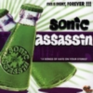 album State is Enemy for ever - Sonic Assassin