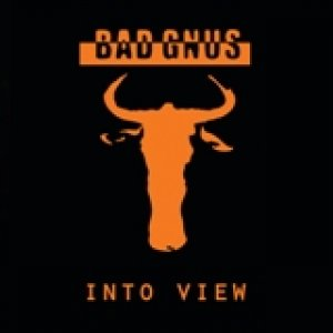album Into View - Bad Gnus