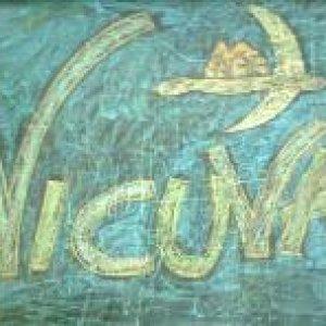 album Demo 2010 - Vicuva