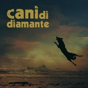 album s_t - CanidiDiamante