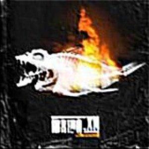 album Non ingerire - IbridoxN