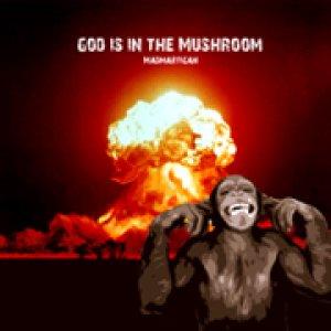 album God is in The Mushroom - Madmartigan