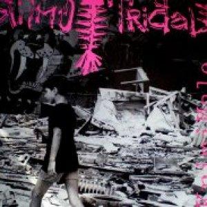 album Kriminale  - Ritmo Tribale