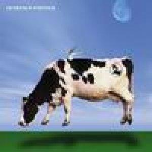 album Elettrico - ZeroKelvin [Piemonte]