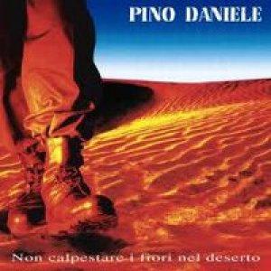 album Non calpestare i fiori nel deserto - Pino Daniele