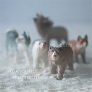 album Possibilities - Sarah Schuster