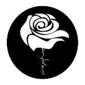 album Dal Ventre - La Rosa Bianca