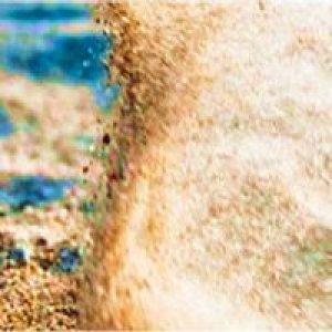 album Sabbia nel vento - Erus Mei