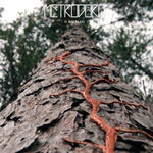 album Il Bel Paese - Metrodora