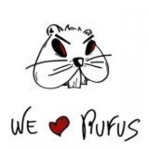 album We Love Rufus EP - Roofers