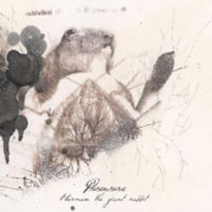 album Herman the giant Rabbit - PlusEnsure