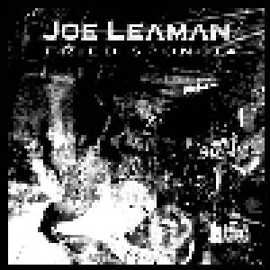 album Fried sponge - Joe Leaman