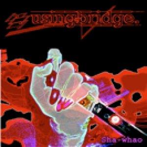 album sha-whao - Using Bridge