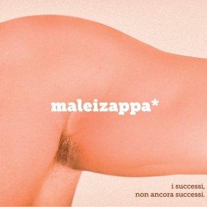 album i successi non ancora successi - Maleizappa