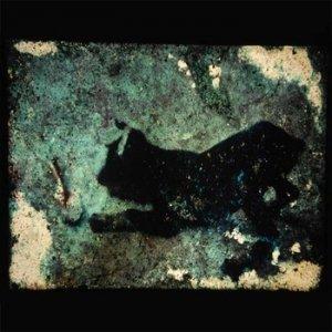 album Esercizi Di Statica - mircanto
