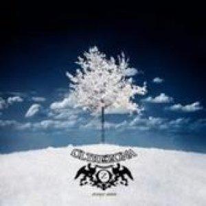 album strange union - OltreZona