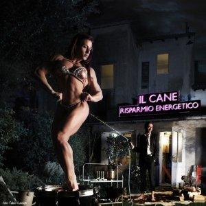 album Risparmio energetico (mttte-0007/2012) - uscita 27 gennaio 2012 - Il Cane