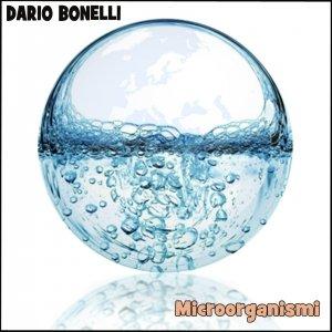 album Microorganismi - Dario Bonelli