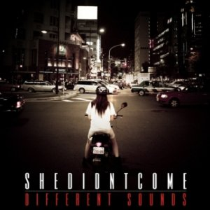 album Different Sounds - shedidntcome