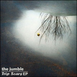 album Trip Scars - The Jumble