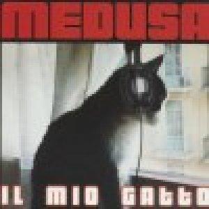album Il mio gatto (single) - Medusa