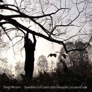 album Dove finisce il colore delle fotografie lasciate al sole - Diego Perrone