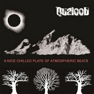 album A Nice Chilled Plate of Atmospheric Beats - QualooD
