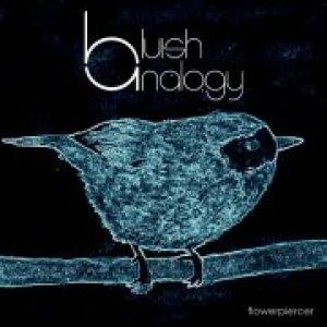 album Flowerpiercer - EP - Bluish Analogy