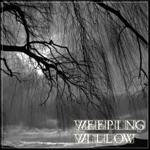 album Weeping Willow - Weeping Willow