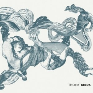 album Birds - Thony
