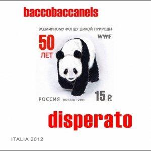 album Disperato - Bacco Baccanels
