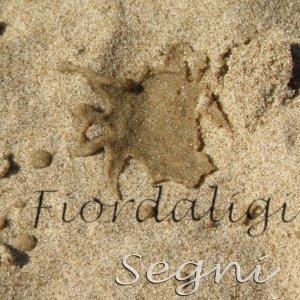 album Segni - Fiordaligi