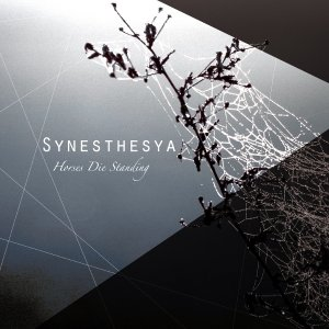 album Synesthesya EP - Horses Die Standing