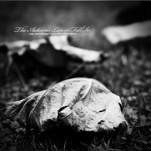 album The Different Visions Of Things - The Autumn Leaves Fall In