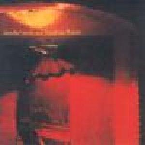album The wrong cage (<i>feat. Kawabata Makoto</i>) - Jennifer Gentle