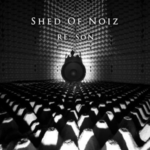 album RE: SoN - Shed Of Noiz