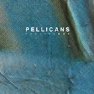 album DANCING BOY - PELLICANS