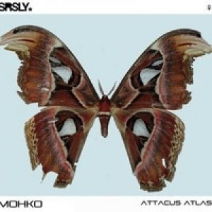 album Attacus atlas - Mohko