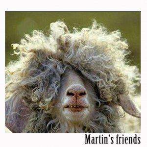 album Martin's friends - Martin's friends