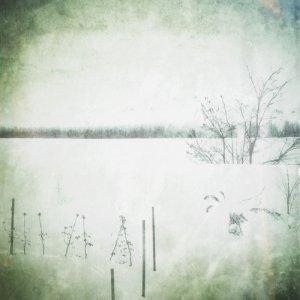 album Poly - demo - - Pugaciov Sulla Luna